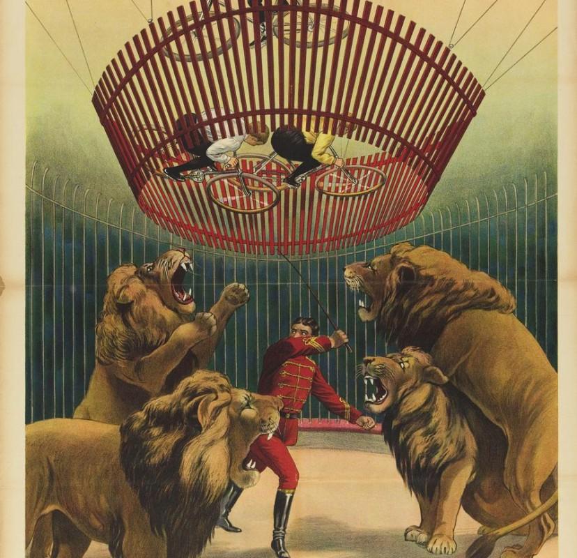 Het verbod op wilde circusdieren Wat wil Buba zelf?